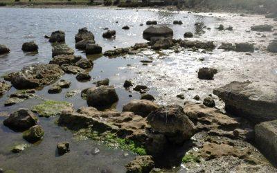 Ολοκληρώθηκε η δεύτερη φάση της υποβρύχιας έρευνας στα Αμπελάκια Σαλαμίνας