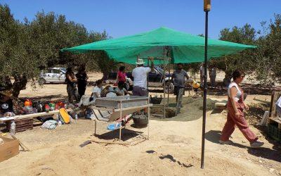Ανακάλυψη Μινωικού τάφου στο Κεντρί Ιεράπετρας