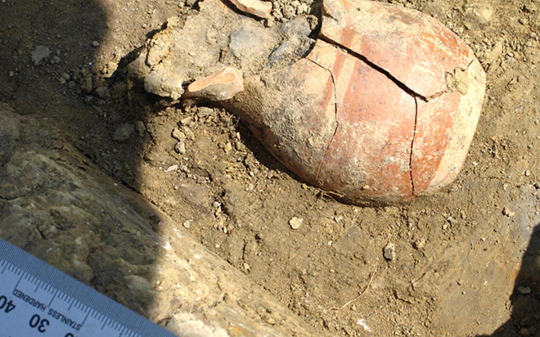 Θησαυρός ασημένιων νομισμάτων βρέθηκε στην αρχαία Φαναγόρεια