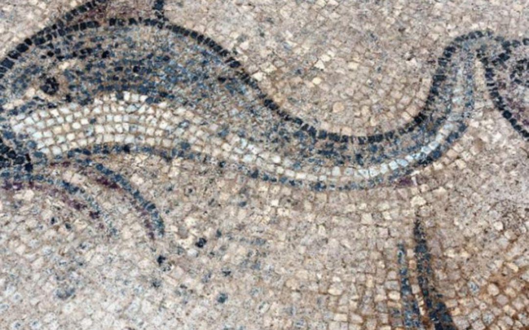Ανακαλύφθηκε στην Αλικαρνασσό της Μικράς Ασίας η έπαυλη αρχαίου Έλληνα ψαρά