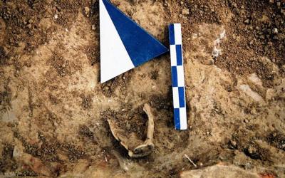 Αποτελέσματα αρχαιολογικής έρευνας στο Ιερό του Ελικωνίου Ποσειδώνα στα Νικολέικα Αιγιάλειας